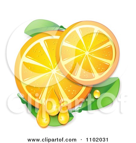 Clipart Juicy Orange Slices And Leaves On White - Royalty Free Vector Illustration by merlinul