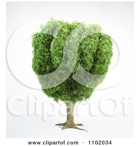 Clipart 3d Tree With A Fist Shaped Canopy - Royalty Free CGI Illustration by Mopic