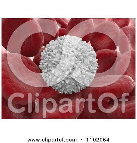 Clipart 3d White Blood Cell With Red Cells - Royalty Free CGI Illustration by Mopic