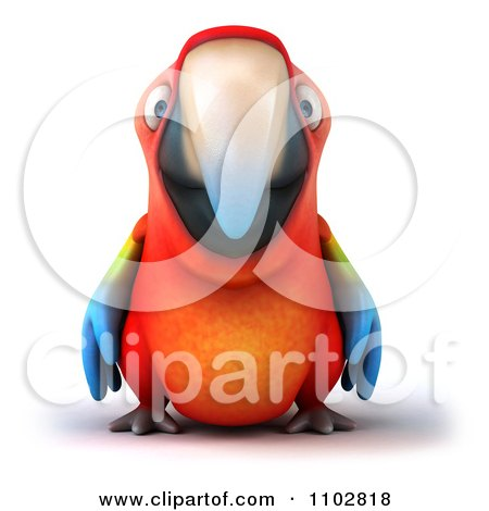 Clipart 3d Macaw Parrot - Royalty Free CGI Illustration by Julos