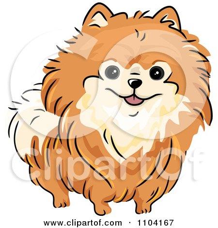 Clipart Happy Orange Pomeranian Dog - Royalty Free Vector Illustration by BNP Design Studio