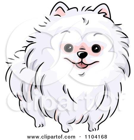 Royalty Free RF Pomeranian Clipart Illustrations