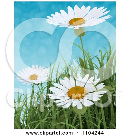 Clipart 3d White Daisies And Blades Of Grass Against A Cloudy Sky - Royalty Free CGI Illustration by KJ Pargeter