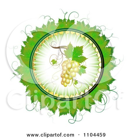 Clipart Circle Of White Grapes And Grene Leaves 2 - Royalty Free Vector Illustration by merlinul