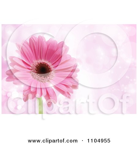 Clipart Pink Daisy Flower Over Sparkles With Copyspace - Royalty Free Vector Illustration by KJ Pargeter
