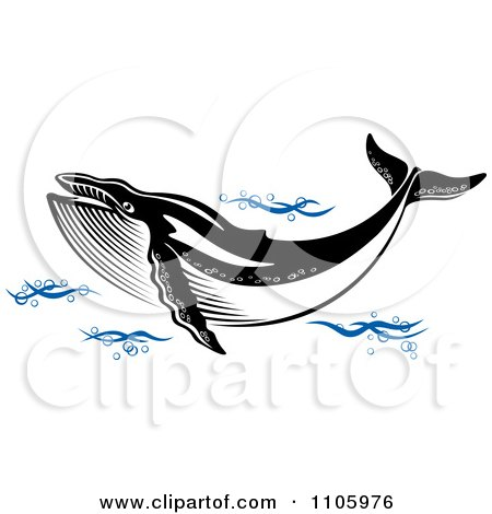 Clipart Black And White Humpback Whale In Blue Waves - Royalty Free Vector Illustration by Vector Tradition SM