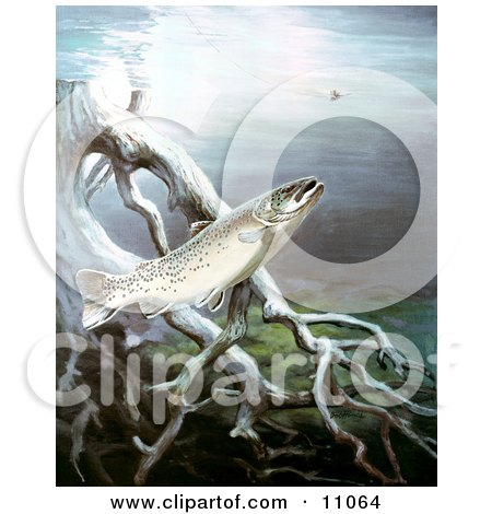 Clipart Illustration of a Brown Trout Fish Swimming by Underwater Tree Roots by JVPD