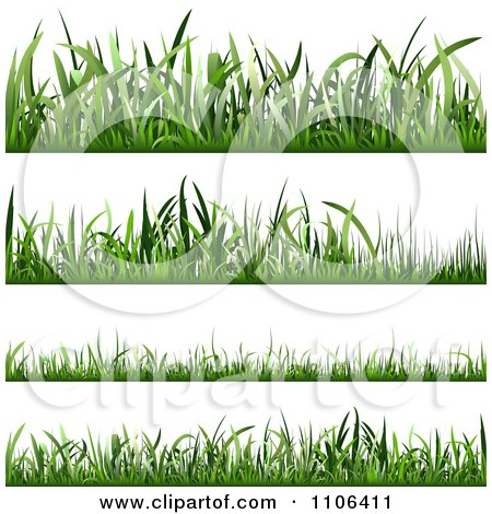Clipart Four Lawn Grass Borders At Different Lengths - Royalty Free Vector Illustration by dero