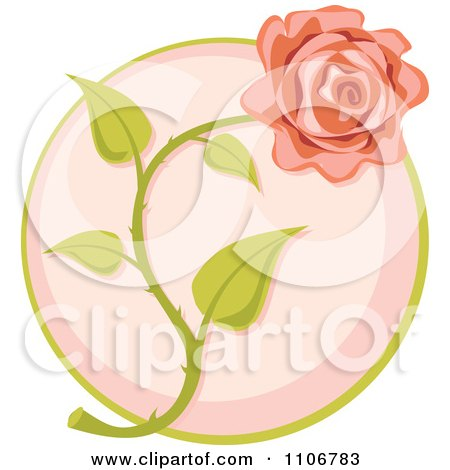 Pink Rose Over A Circle Posters, Art Prints