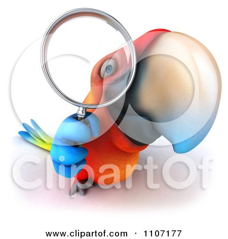 Clipart 3d Macaw Parrot Searching And Looking Through A Magnifying Glass 1 - Royalty Free CGI Illustration by Julos