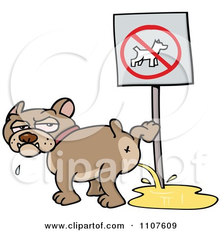 Clipart Bulldog Peeing On A No Dogs Sign - Royalty Free Vector Illustration by gnurf