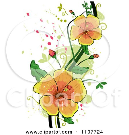 Clipart Yellow Hibiscus Flowers Over Swirls And Splatters - Royalty Free Vector Illustration by BNP Design Studio