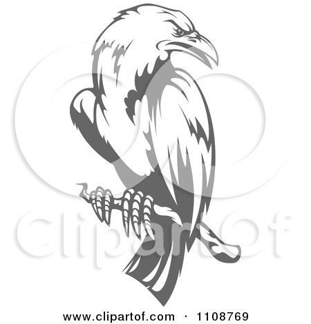 Clipart Perched Grayscale Crow - Royalty Free Vector Illustration by Vector Tradition SM