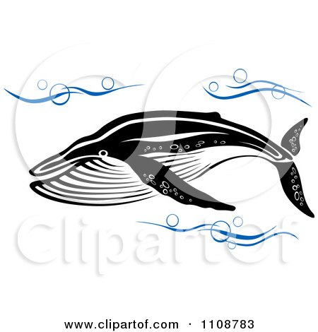 Clipart Swimming Black And White Humpback Whale In Blue Waves - Royalty Free Vector Illustration by Vector Tradition SM