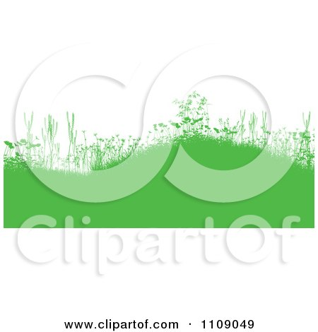 Clipart Green Grassy Burms With Wildflowers And Weeds On White - Royalty Free Vector Illustration by KJ Pargeter