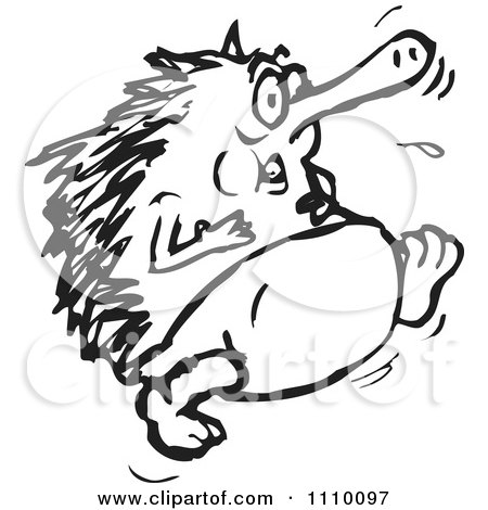 Clipart Black And White Echidna Running - Royalty Free Vector Illustration by Dennis Holmes Designs