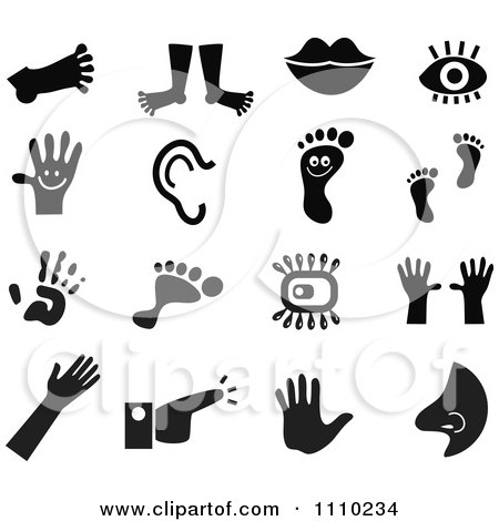 Clipart Black And White Anatomy Icons - Royalty Free Vector Illustration by Prawny