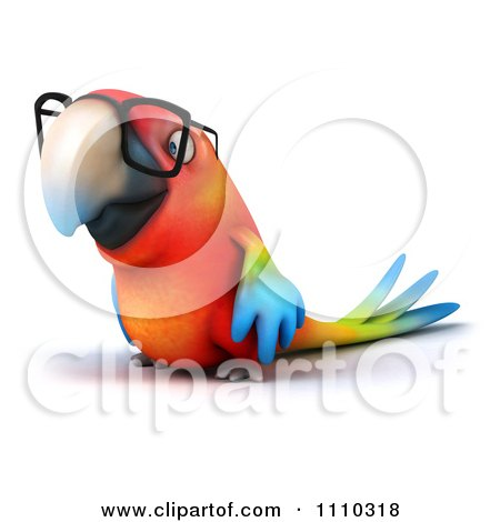 Clipart 3d Macaw Parrot Wearing Glasses 2 - Royalty Free CGI Illustration by Julos