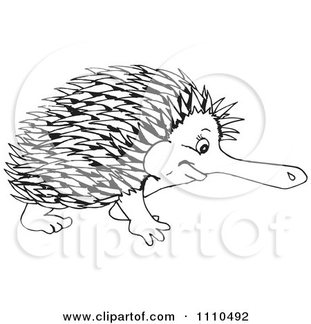 Clipart Black And White Aussie Echidna - Royalty Free Illustration by Dennis Holmes Designs