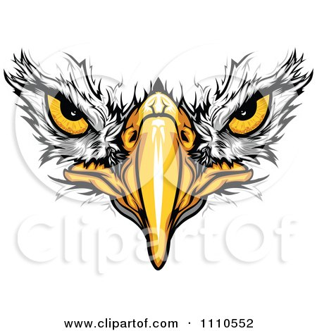Clipart Bald Eagle Face With Menacing Eyes - Royalty Free Vector Illustration by Chromaco