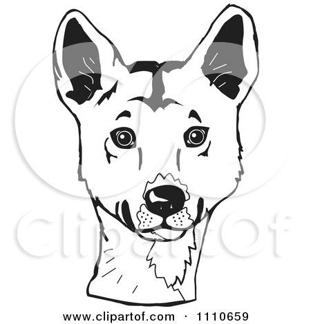 Clipart Black And White Aussie Dingo Head - Royalty Free Illustration by Dennis Holmes Designs