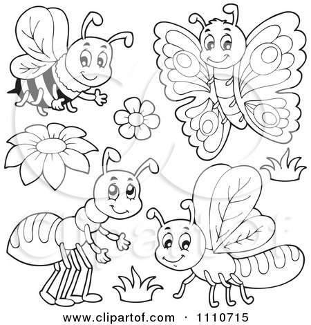 Butterfly Coloring Sheets on Clipart Outlined Bee Butterfly Ant And Dragonfly   Royalty Free Vector