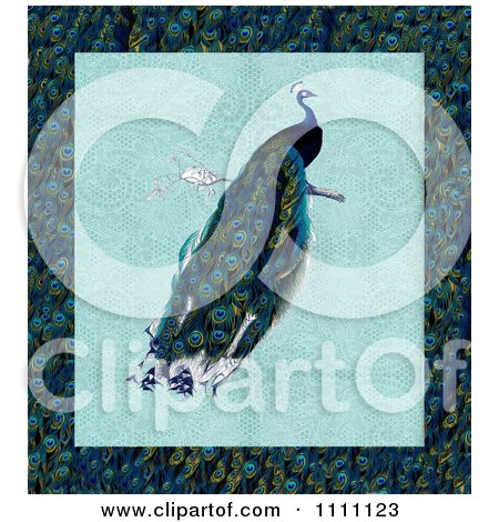 Clipart Peacock Over Lace And A Feather Pattern - Royalty Free Illustration by Prawny Vintage