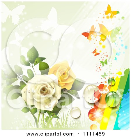 Background Of Yellow And White Roses Butterflies And A Rainbow 3 Posters, Art Prints