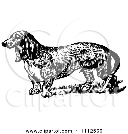 Clipart Retro Black And White Daschund Dog - Royalty Free Vector Illustration by Prawny Vintage