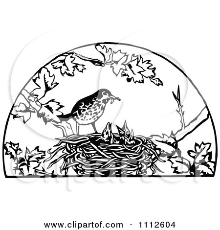 Clipart Retro Black And White Bird Feeding Its Chicks In A Nest - Royalty Free Vector Illustration by Prawny Vintage