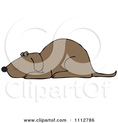 Clipart Brown Dog Resting - Royalty Free Vector Illustration by djart