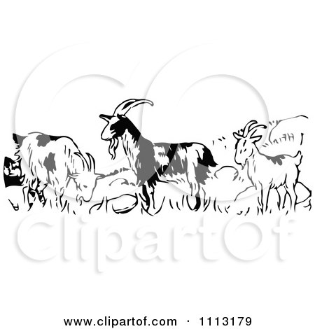 Clipart Vintage Black And White Goats In A Field - Royalty Free Vector Illustration by Prawny Vintage