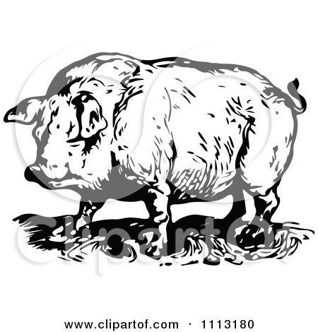 Clipart Of Retro Vintage Black And White Livestock Farm ...