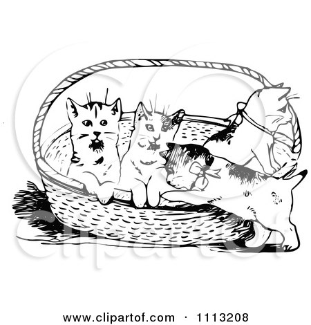Clipart Vintage Black And White Kittens In A Basket - Royalty Free Vector Illustration by Prawny Vintage