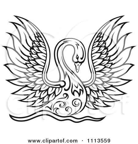 Clipart Black And White Swan Landing On Water With Wings Spread - Royalty Free Vector Illustration by Vector Tradition SM