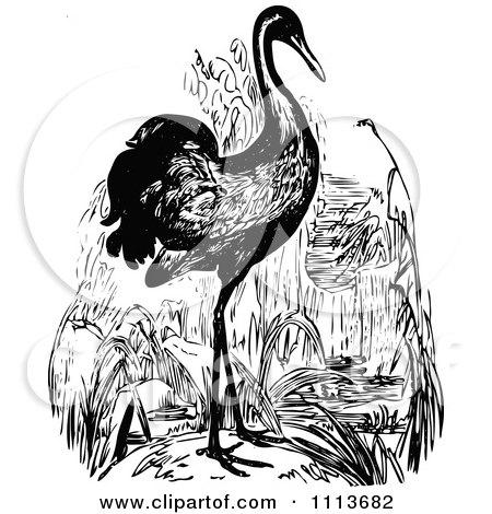 Clipart Vintage Black And White Crane - Royalty Free Vector Illustration by Prawny Vintage