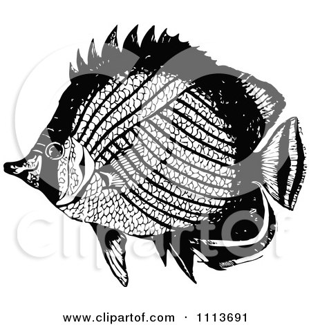 Clipart Vintage Black And White Tropical Marine Fish 3 - Royalty Free Vector Illustration by Prawny Vintage