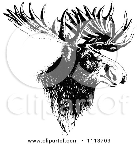Clipart Vintage Black And White Moose Head - Royalty Free Vector Illustration by Prawny Vintage
