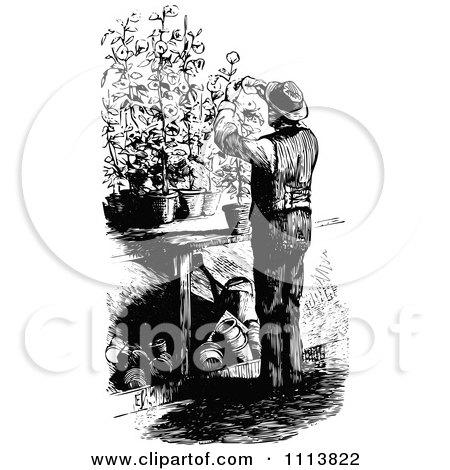 Clipart Vintage Black And White Male Gardner Pruning Plants - Royalty Free Vector Illustration by Prawny Vintage