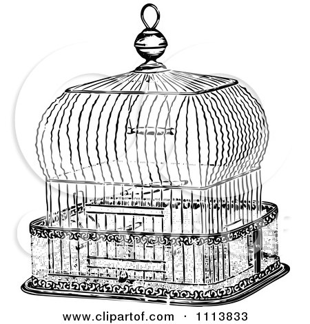 Antique bird cage drawing - photo#48