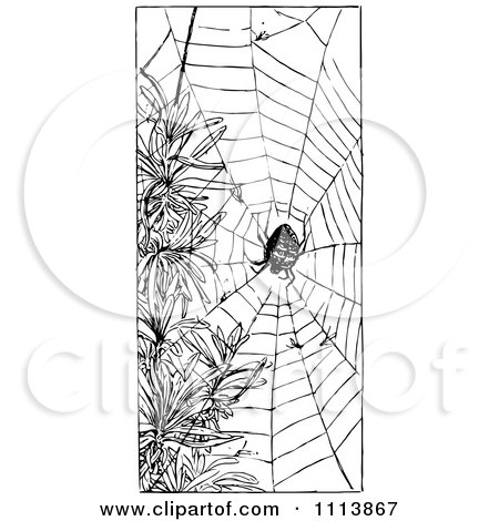 Clipart Vintage Black And White Spider And Web - Royalty Free Vector Illustration by Prawny Vintage