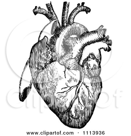 Clipart Black And White Ornate Vintage Floral Heart And ...