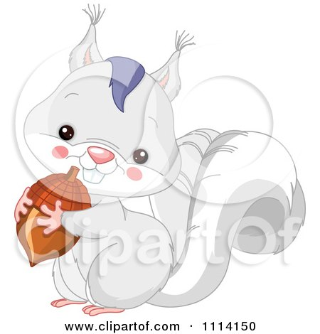 Clipart Cute White Squirrel Holding An Acorn - Royalty Free Vector Illustration by Pushkin