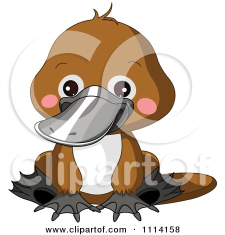 Clipart Cute Sitting Platypus - Royalty Free Vector Illustration by Pushkin