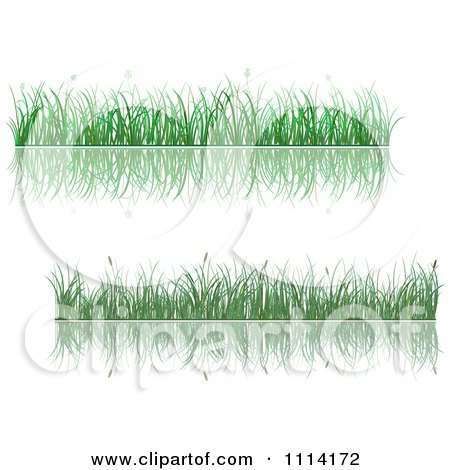 Clipart Green Grassy Borders And Reflections - Royalty Free Vector Illustration by Vector Tradition SM