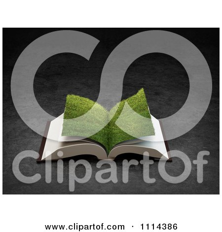 Clipart 3d Grassy Paged Open Book - Royalty Free CGI Illustration by Mopic