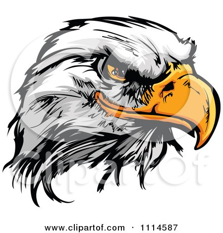 Clipart Fierce Bald Eagle Mascot Head - Royalty Free Vector Illustration by Chromaco