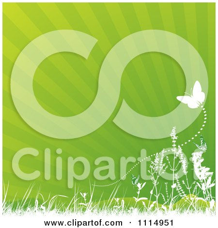 Clipart Green Ray Background With Grasses And Butterflies - Royalty Free Vector Illustration by dero