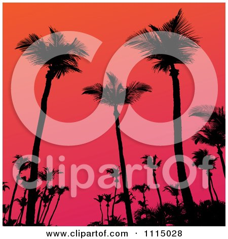 Clipart Silhouetted Tropical Palm Trees Against A Gradient Sunset Sky - Royalty Free Vector Illustration by Arena Creative