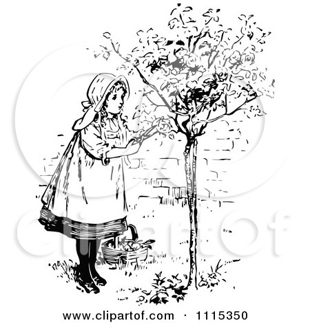 Clipart Vintage Black And White Girl Picking Flowers From A Shrub 1 - Royalty Free Vector Illustration by Prawny Vintage